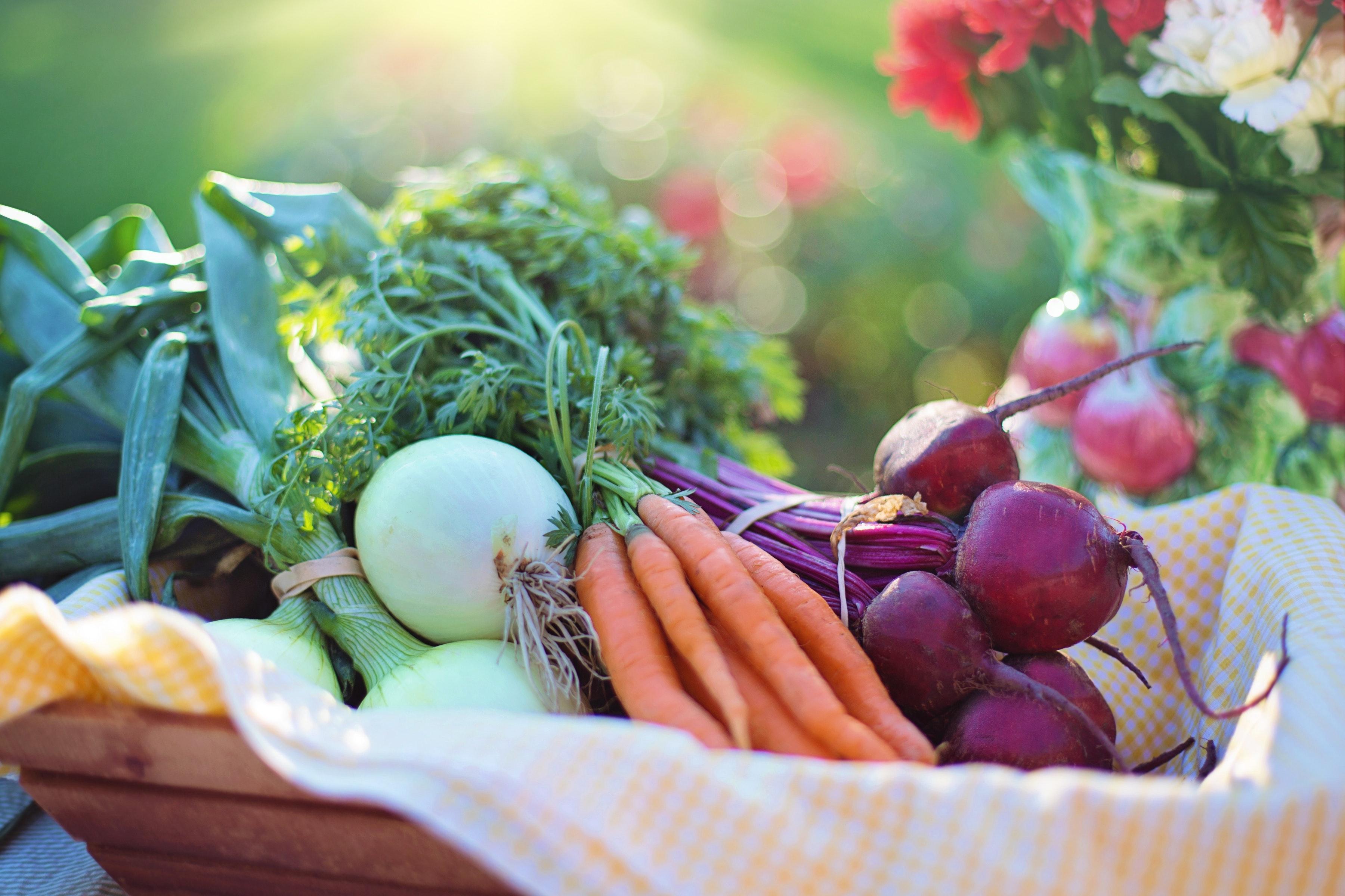 zeit sparen obst und gemüse